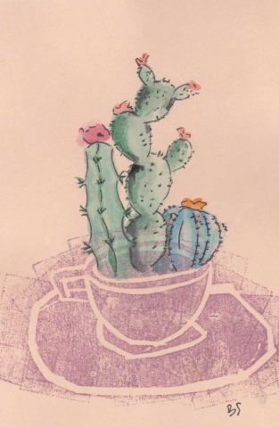 Cactus 10x15 cm
