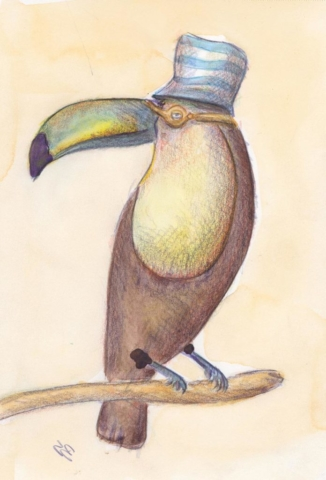 Creatures: Toucan